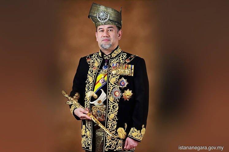 Ali Raja